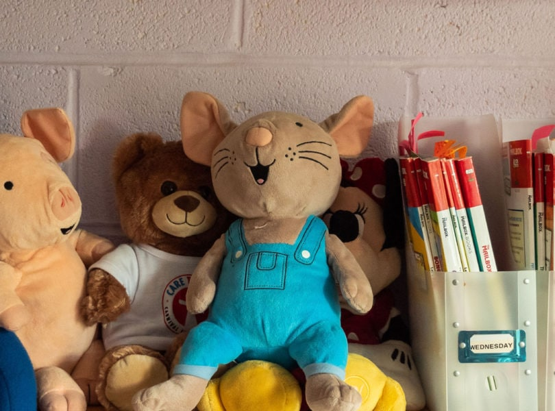 Stuffed animals on the shelf at the CPC Family Childcare Center