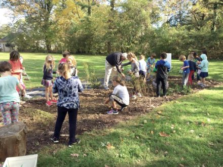 Elementary school students plant native plants