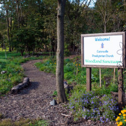 """A path leads into the woods next to a sign that says, """"Welcome! Catonsville Presbyterian Church Woodland Sanctuary"""""""