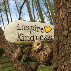 """A rock is painted with the words """"inspire kindness"""" and is propped on a tree branch"""